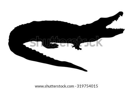 Nile Crocodile Vecteurs de stock et clip-Art vectoriel ...