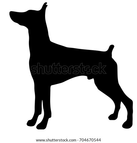silhouette of a dogvector illustration of doberman pinscher