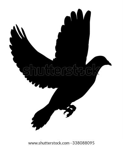 Silhouette of a flying dove on a white background vector illustration