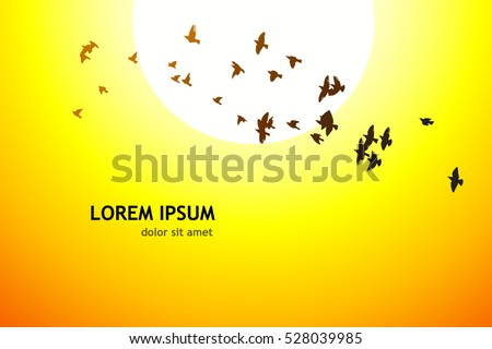 silhouette of a flying flock of birds at sunset. Vector