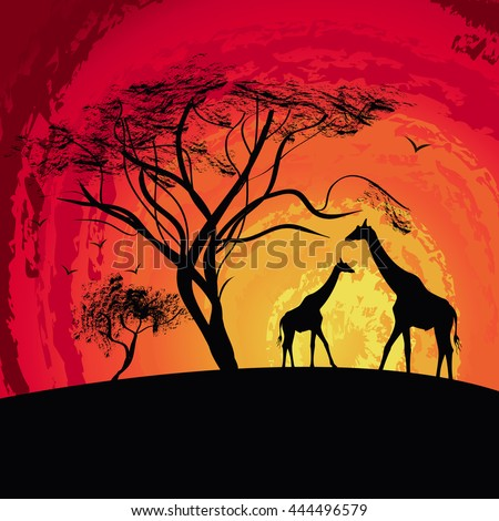 silhouette of a giraffe , sunset in Africa , landscape , vector - stock vector