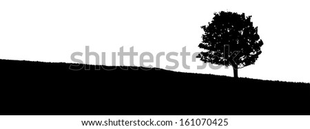 silhouette of a tree in the meadow