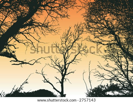 Silhouette of a tree in winter - stock vector
