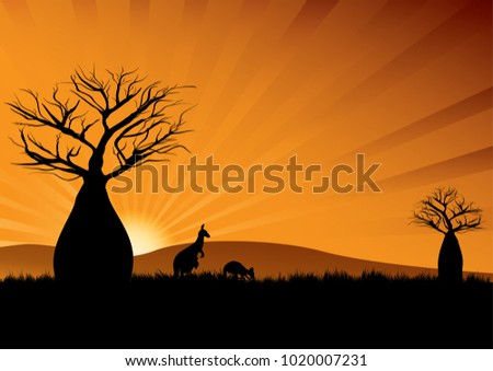 Silhouette of Australian kangaroos among baobab trees at sunset
