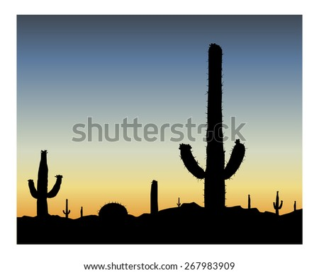 Silhouette of blooming cactuses on the background of desert. Blue sky.  Eps 10. - stock vector