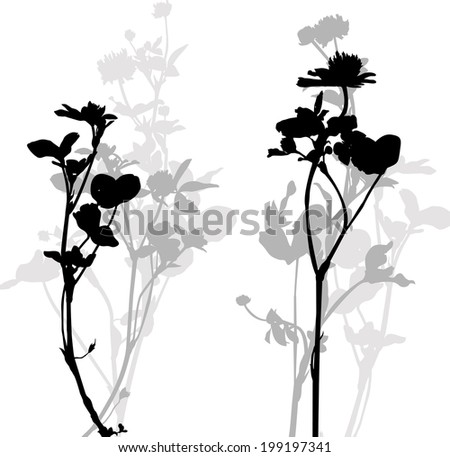 Silhouette of herbs and flowers, hand drawn vector illustration - stock vector