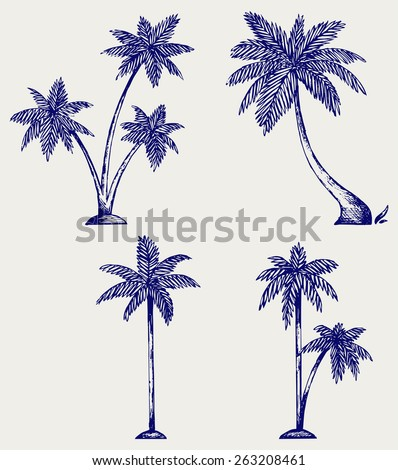 Silhouette of palm trees. Doodle style - stock vector