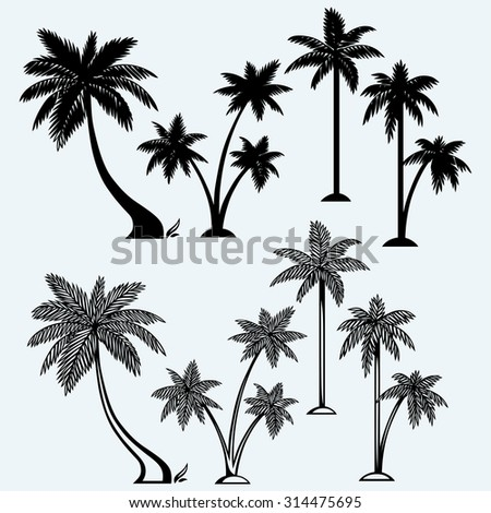Silhouette of palm trees. Isolated on blue background - stock vector
