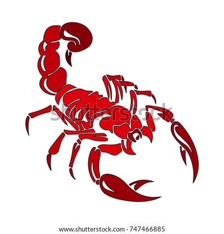 scorpion stock vector 109354196 shutterstock