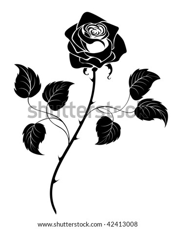 Rose Line Art Stock Images Royalty Free Images Vectors