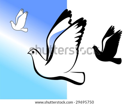 Silhouette of the flying pigeon. A vector