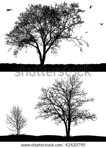Silhouette of trees and birds on the white background. - stock vector