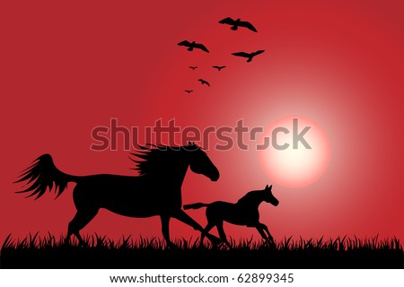 Silhouette of two horses skipping on a decline - stock vector