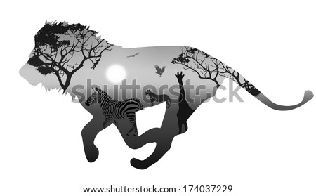 silhouette running lion. inside savannah landscape with silhouettes of animals and trees at sunset. black and white. white background - stock vector