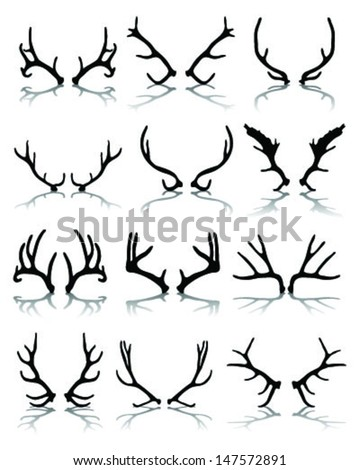 Silhouettes and shadows of deer antlers-vector - stock vector