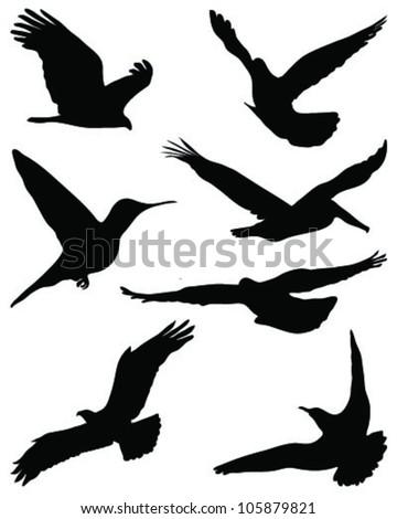 Silhouettes of birds in flight - stock vector