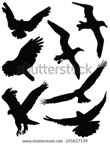 Silhouettes of birds in flight-vector - stock vector