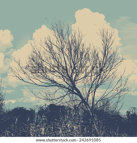 silhouettes of bush and sky. vector illustration. - stock vector