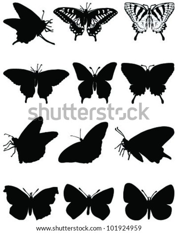 Silhouettes of  butterflies-vector - stock vector