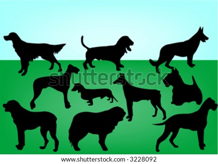 silhouettes of 10 dogs
