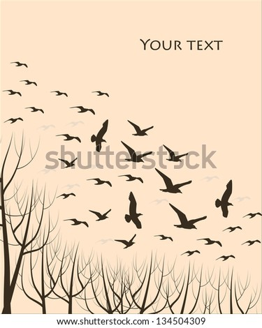 silhouettes of flying birds and trees, vector illustration - stock vector