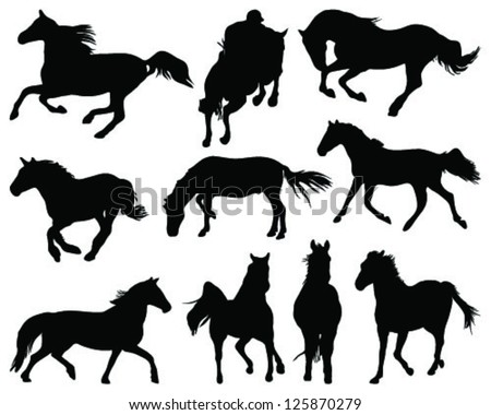Silhouettes of horses on white background-vector