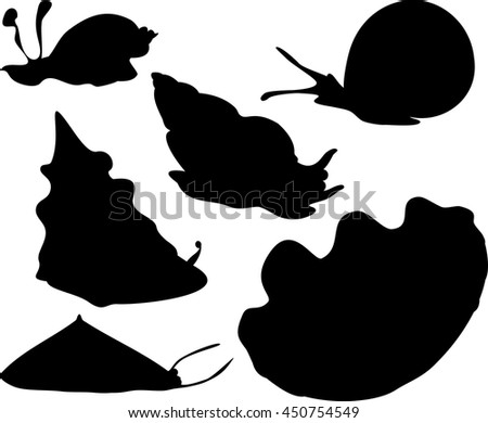 silhouettes of mollusks