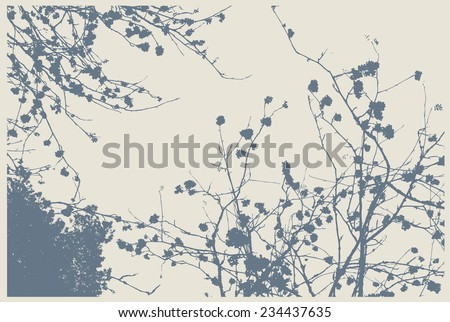silhouettes of rowan-tree in the forest. detailed vector illustration - stock vector