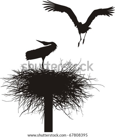 Silhouettes of two storks to nest - stock vector
