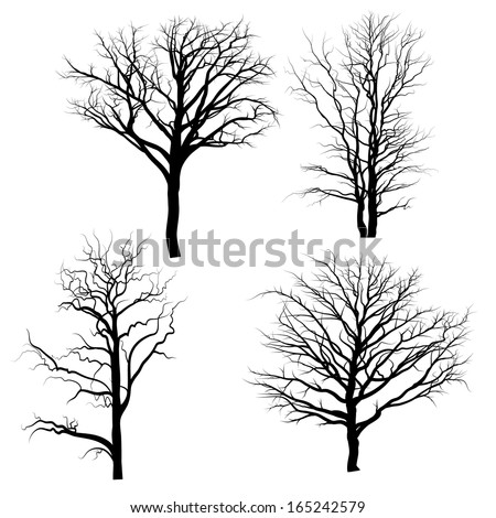 Siluette with trees - stock vector