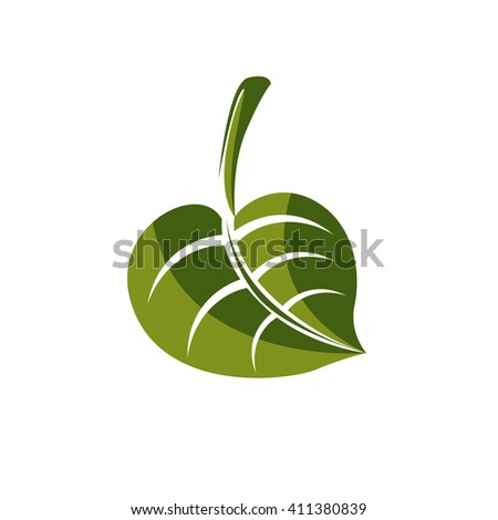 Simple green deciduous vector tree leaf, stylized nature element. Ecology symbol, can be used in graphic design. - stock vector