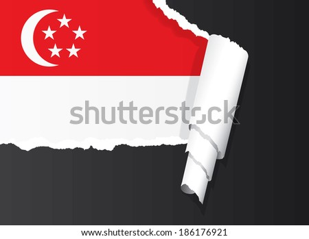 Singapore flag under ripped paper vector illustration. - stock vector