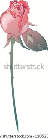 Single Rose on long stem rose and red colors with one leaf - stock vector