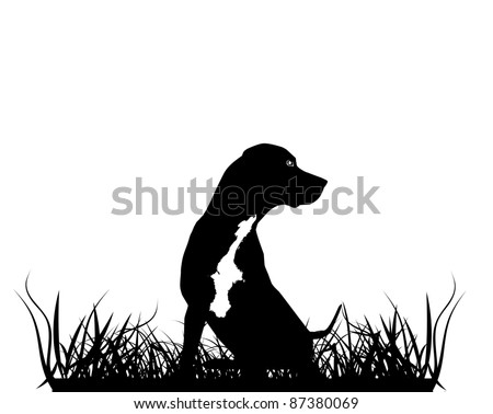 Sitting Leopard Catahoula Dog Silhouette in Grass - stock vector