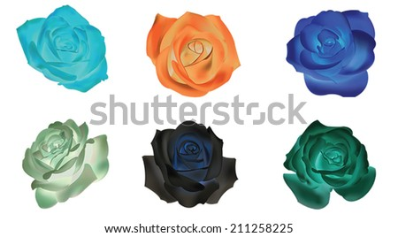 Six dull rose icons collection set, create by vector - stock vector