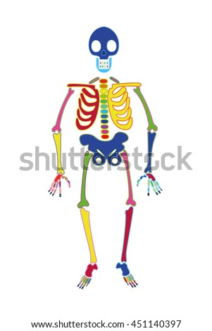 Skeleton Color Stock Vector HD Royalty Free 451140397 Shutterstock