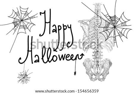 Skeleton. Happy Halloween . Nice picture on Halloween - stock vector