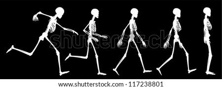 skeleton run silhouette - stock vector