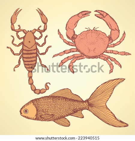 Sketch cute crab, scorpion and fish  in vintage style, background