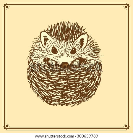 Sketch cute hedgehog in vintage style, vector - stock vector
