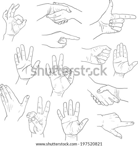 sketch drawing hands - stock vector