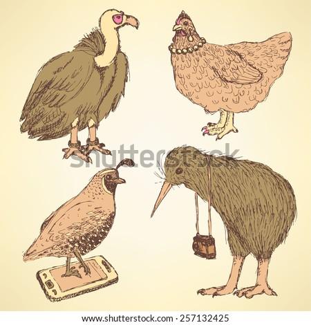 Sketch fancy birds in vintage  style, vector   - stock vector