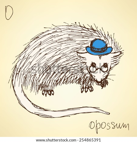 Sketch fancy opossum in vintage style, vector - stock vector