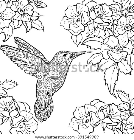 Sketch Hummingbird Flying Around Flowers Full Of Nectar For Adult Antistress Coloring Page