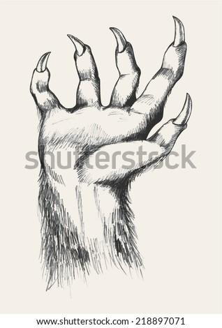 Sketch illustration of werewolf hand - stock vector