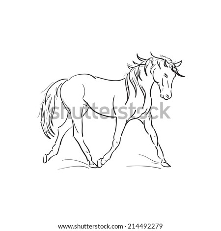 sketch of running horse vector