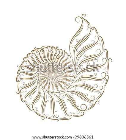 Sketch of seashells golden bruch - stock vector