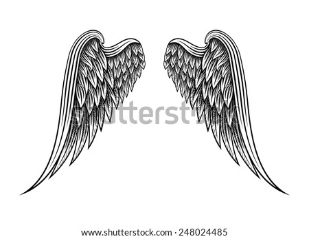 Sketch of two hand drawn angel wings isolated on white background. Vector illustration - stock vector