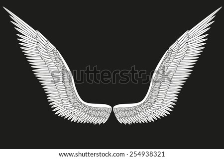 Sketch open white angel wings. Vector Illustration isolated on black background. - stock vector