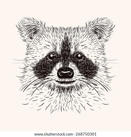 Raccoon Tattoo Stock Images, Royalty-Free Images & Vectors ... Raccoon Face Illustration